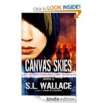 cover canvas skies