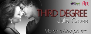 Third-Degree-Tour-Banner